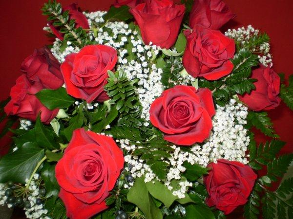 Laurea gipsy fiori fiori alessandria consegna fiori for Addobbi per laurea